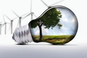 energy efficient light bulbs