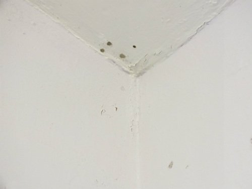 What Does Condensation Mean To Home Owners